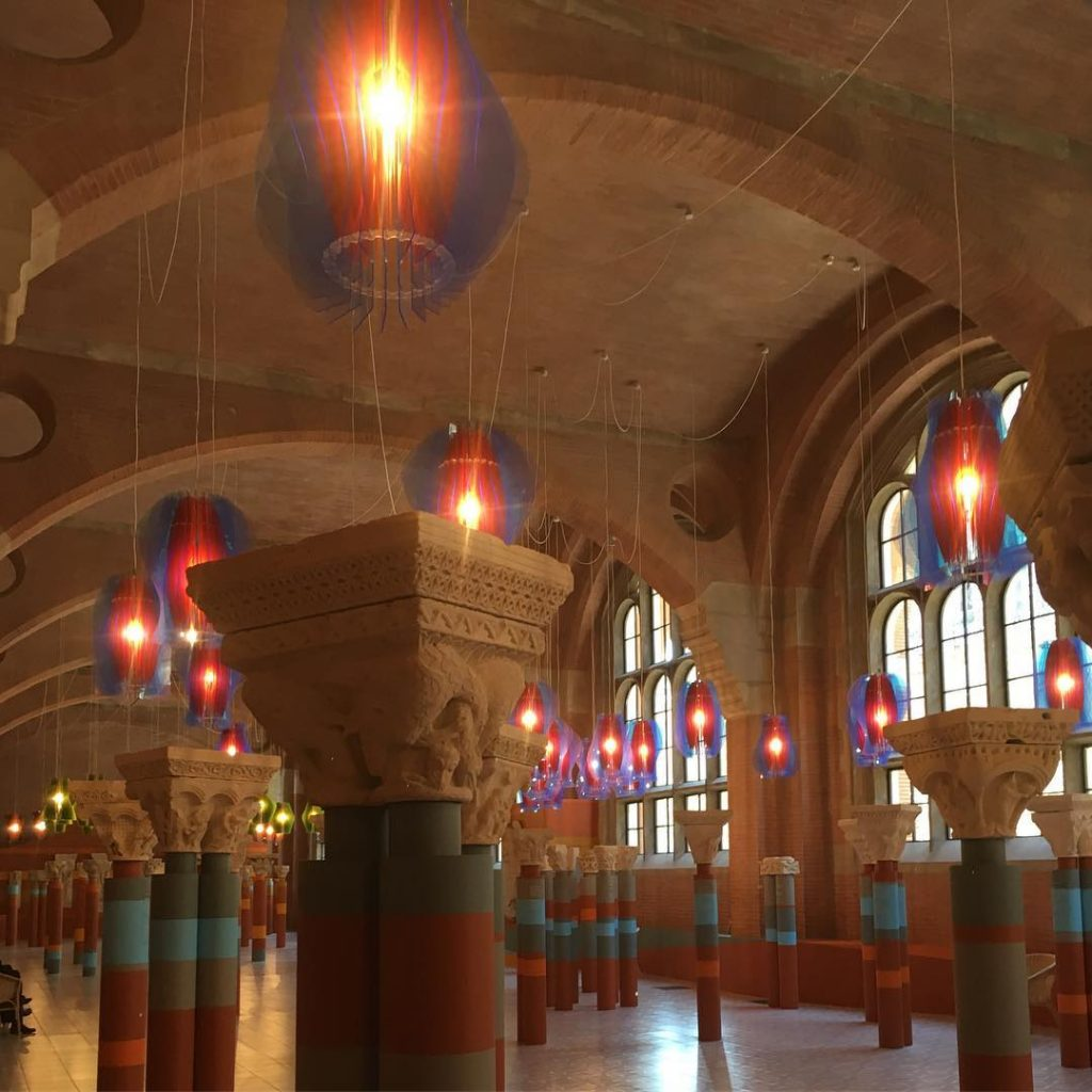 Waow plein les yeux toulouse museeaugustins